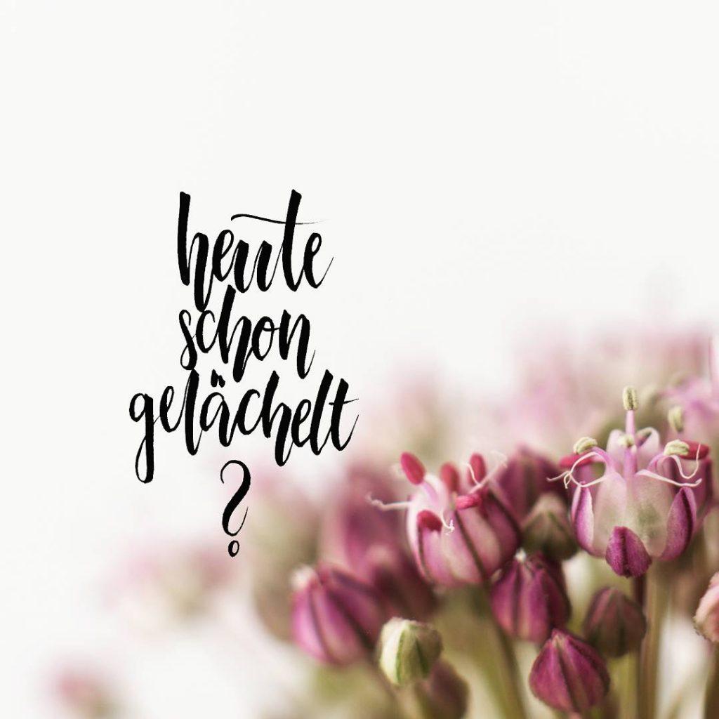 Lettering Heute schon gelächelt? von Zauber ein Lächeln.