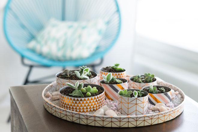 DIY | Minigarten basteln mit Teelichtern für winzig kleine Sukkulenten