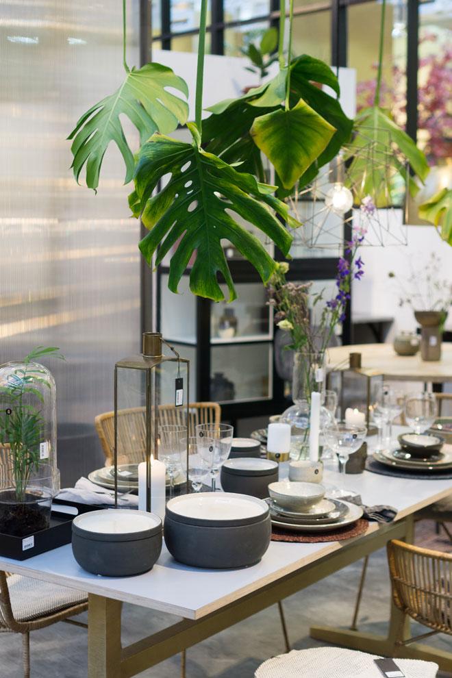 urban jungle trend f rs zuhause pflanzen deko von der ambiente 2018. Black Bedroom Furniture Sets. Home Design Ideas