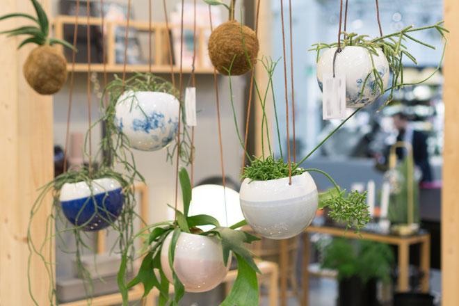 Der Urban Jungle Trend Für Zuhause: Pflanzen Deko Von Der Ambiente 2018