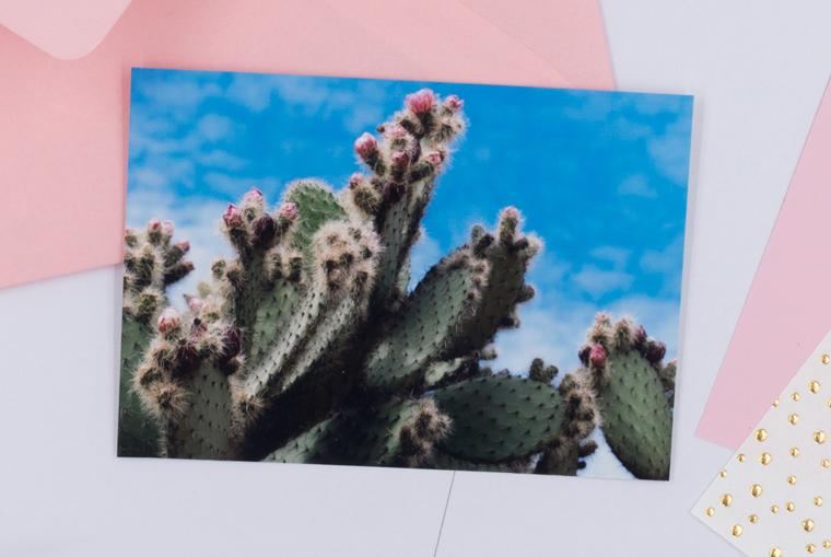 DIY-Idee Karten gestalten mit Kakteen-Foto zum Herunterladen und Ausdrucken
