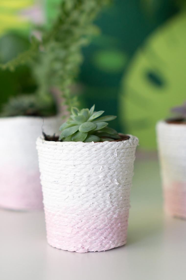 DIY-Idee im Korb-Stil als Sukkulenten Töpfe