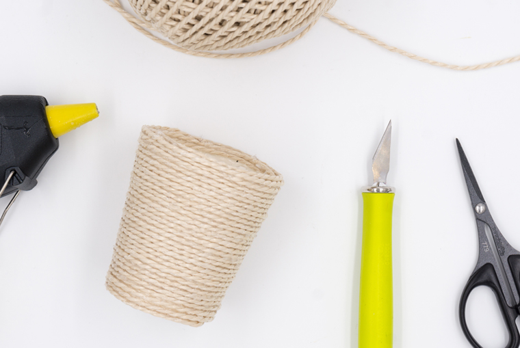 Sukkulenten Topf aus Seil selber machen