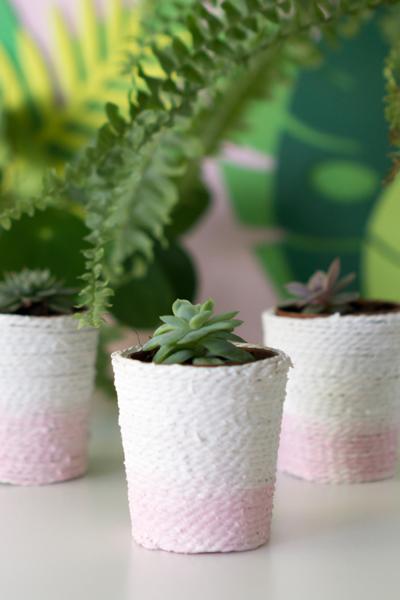 DIY | Sukkulenten Töpfe im Korb-Stil selber machen