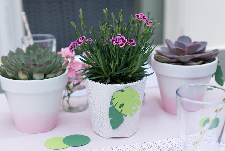 Dekorierte Tischdeko mit Sukkulenten und Gartenblumen