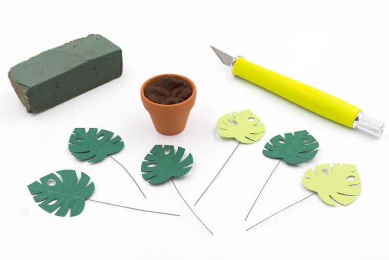 Vorbereitete Blätter in Tontöpfe stecken