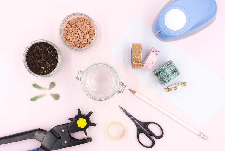 Material für das DIY Mitbringsel selber machen: Sukkulenten Blattstecklinge to go