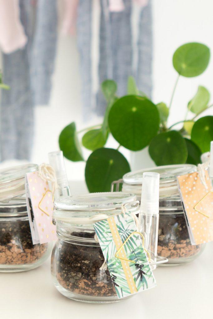 Mitbringsel selber gemacht mit Sukkulenten Blattstecklingen to go DIY-Idee mit Anleitung und Vorlage zum Ausdrucken