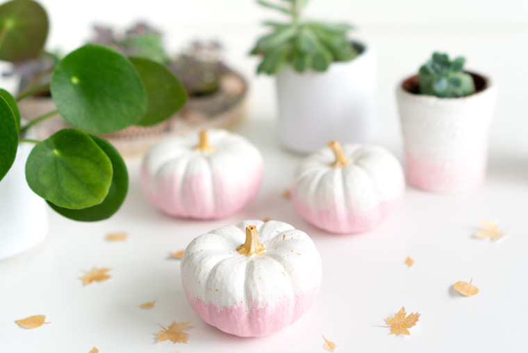 Zauberhafte Herbstidee: Selbstgemachte Kürbis Deko mit Baby Boo Kürbissen