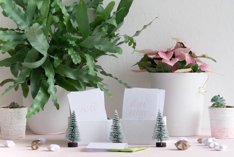 Schöne DIY-Idee im Advent für Teeliebhaber