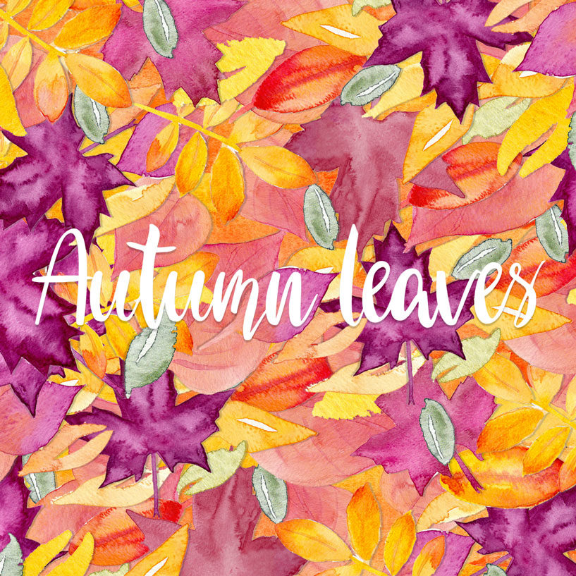 Kostenloses Wallpaper Autumn Leaves