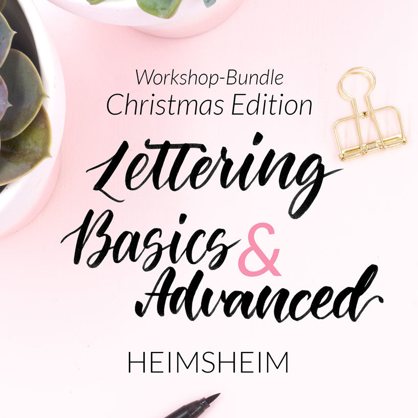 Workshop Bundle Christmas Edition